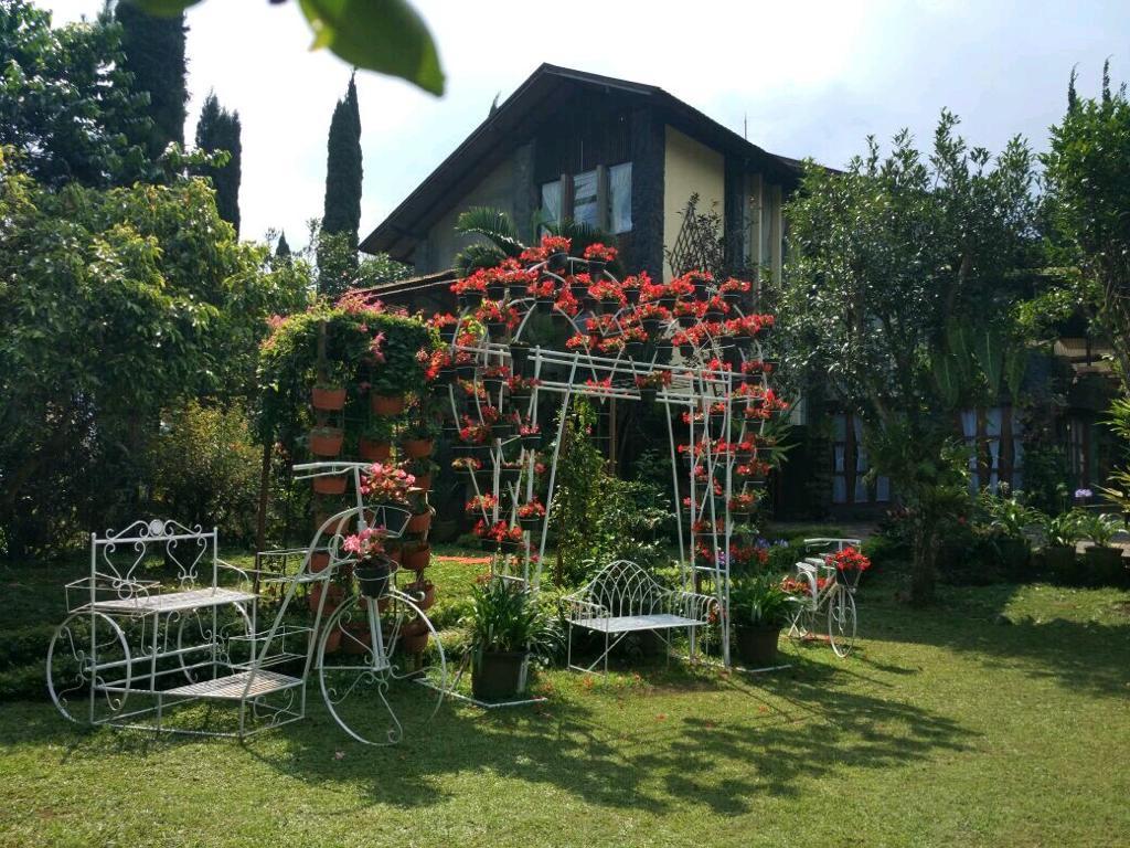sewa villa lembang dengan halaman luas