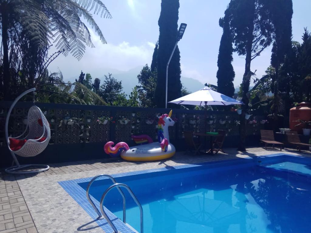 villa murah kolam renang lembang